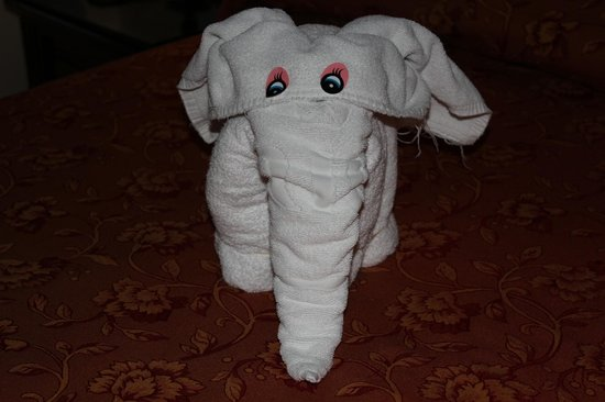 Hotel Riu Palace Cabo San Lucas: One of our towel animals