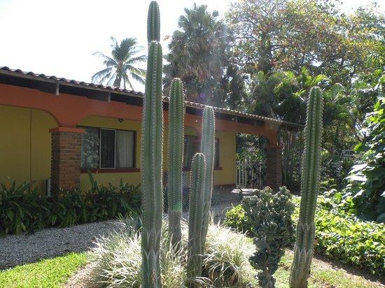 Las Espuelas Hotel: végétation entre les haBITATIONS