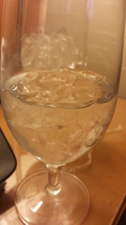 Greektown Casino Hotel : Ordered 2 glasses of water and both had hair and lint inside the ice...Room service