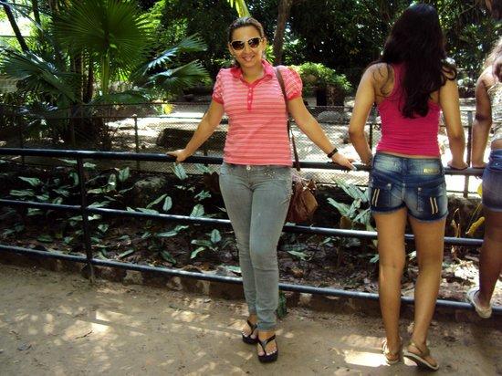 Museu Paraense Emílio Goeldi: minha esposa