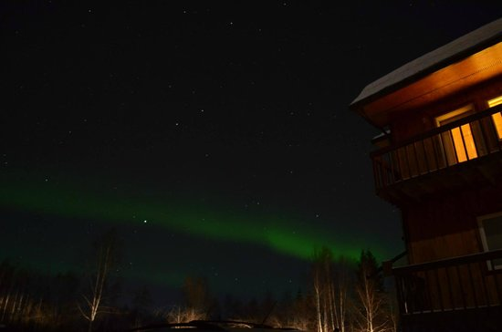 Alaska Grizzly Lodge B&B : Aurora from the grounds around the lodge