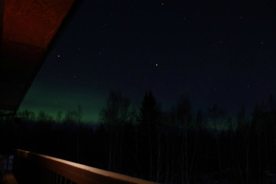 Alaska Grizzly Lodge B&B: Aurora from our balcony