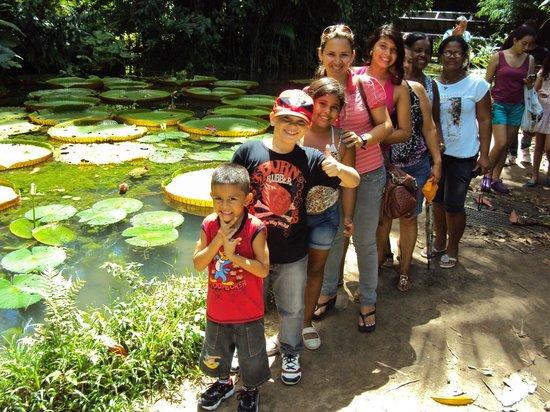 Museu Paraense Emílio Goeldi: família