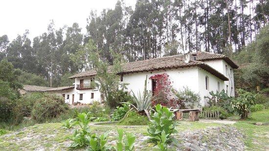 Hacienda Guachala: 9