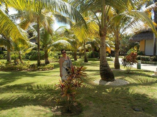 Caribe Club Princess Beach Resort & Spa : grounds