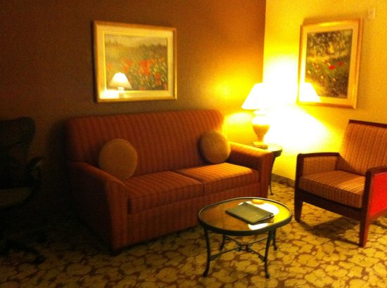 Hilton Garden Inn Atlanta North/Johns Creek: Living/Sitting area