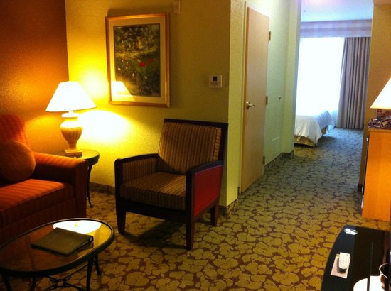 Hilton Garden Inn Atlanta North/Johns Creek: Living/ Sitting area
