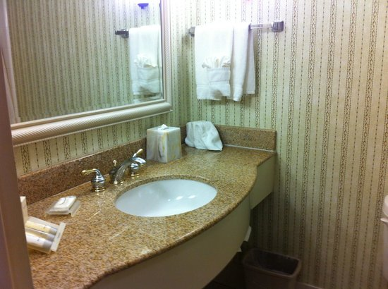 Hilton Garden Inn Atlanta North / Johns Creek: Bathroom
