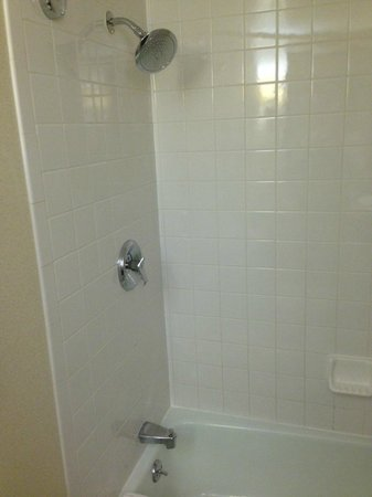 Renaissance St. Louis Airport Hotel: Slightly dated tile shower