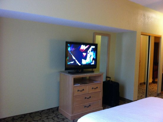 Hilton Garden Inn Atlanta North / Johns Creek: TV In bedroom area