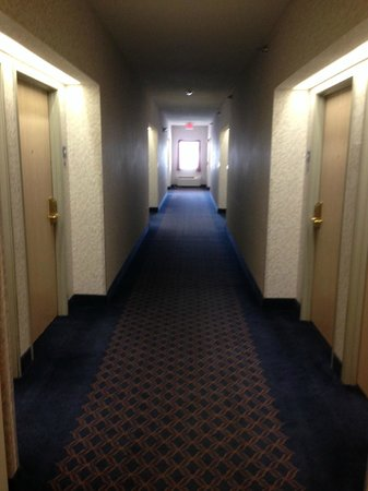Holiday Inn Express Elkhart North - I-80/90 EX. 92: Horrible hallway wallpaper and carpet