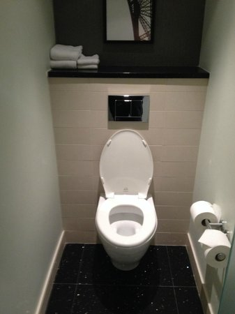 Radisson Blu Aqua Hotel: toilet