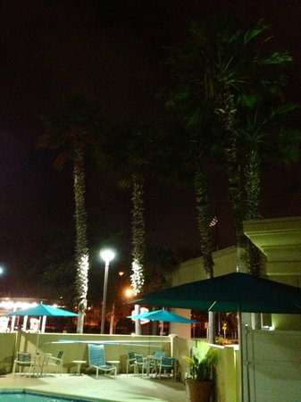 Hampton Inn Jacksonville Downtown I-95: Photo of pool area at night.  Very serene.