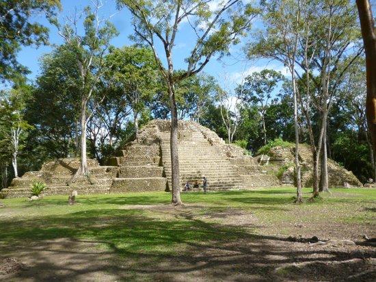 Ian Anderson's Caves Branch Jungle Lodge: Mayan ruins