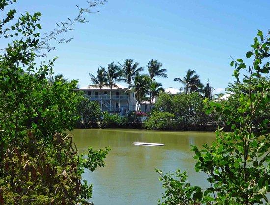 Coconut Coast Villas : Coconut Coast from across the salt pond