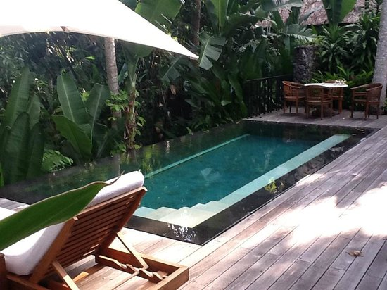 COMO Uma Ubud: Pool at our villa