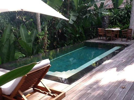 Uma by COMO, Ubud : Pool at our villa