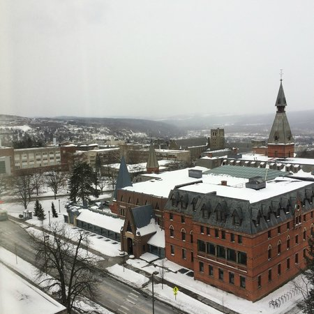 The Statler Hotel at Cornell University: Sage Hall & the Engineering Quad from Room 912