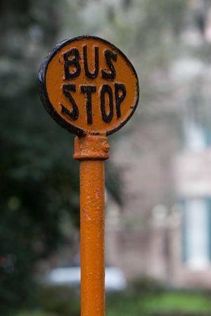 Capturing Savannah - Photography Tours: No Waiting