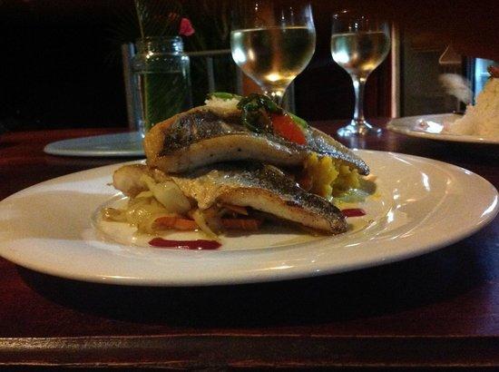 Hotel Sol y Mar : Corvina prepared by chef Federico, Yummy!