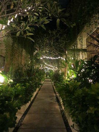Arana Suite Hotel: pathways at night
