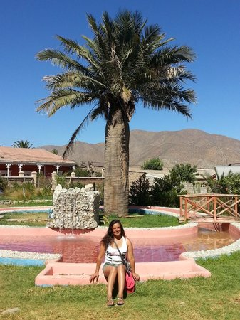 Hostal Aldea Del Elqui: zona piscina