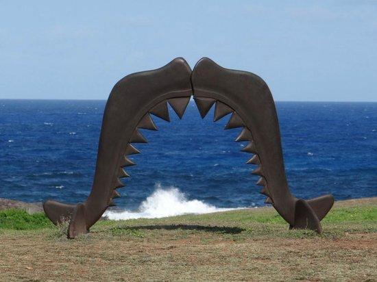 Museu do Tubarão: uma das várias esculturas legais na parte externa do Museu dos Tubarões