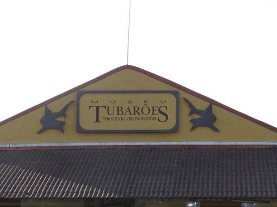 Museu do Tubarão: fachada