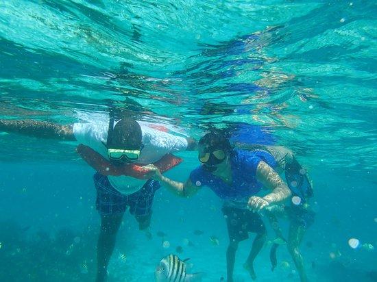 Ezona's Aquatics: Trying to just float