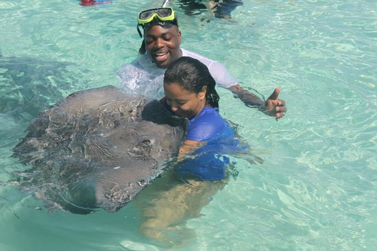 Ezona's Aquatics: Kissing the Stingray