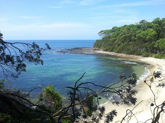 Ulladulla Headland Holiday Park: Lobster Jack Beach