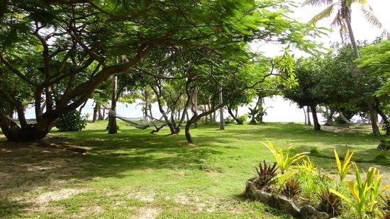 Treasure Island Resort: My favourite hammock