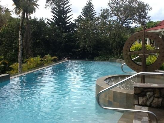 Villa Beach Cottages: La Dauphine infinity pool