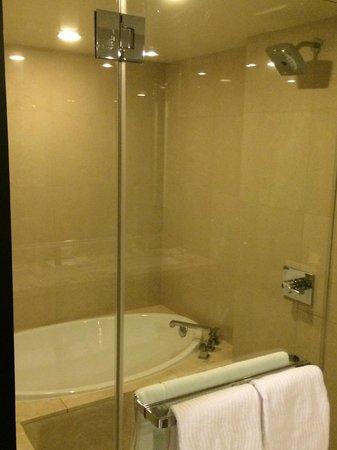 ARIA Resort & Casino : Awesome Shower and Bathtub!
