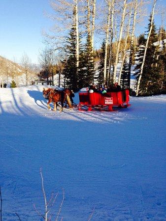 Stein Eriksen Lodge Deer Valley: The sleigh ride exceeded expectations!