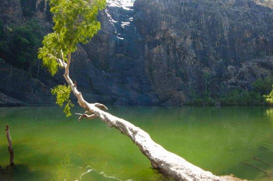 Gunlom Waterfall Creek: bottom pool