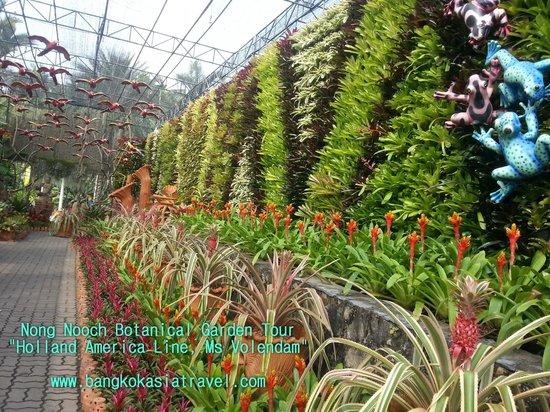 Elegant Bangkok Asia Travel   Day Tours: Tours Nong Nooch Botanical Garden,