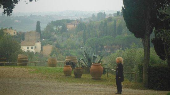 Villa Cambi B&B: la vista