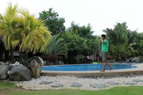 Alona Golden Palm Resort: poolside