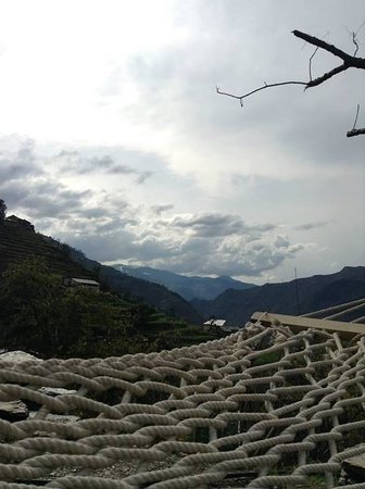 Himalayan Orchard Huts: The world as seen from a hammock