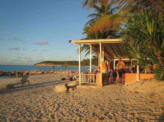 Buccaneer Beach Club: coconut grove