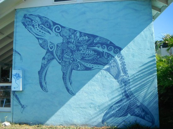 Cook Islands Whale and Wildlife Centre: Fabulous mural.