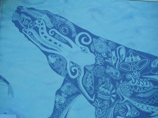 Cook Islands Whale and Wildlife Centre: Wonderful detail!