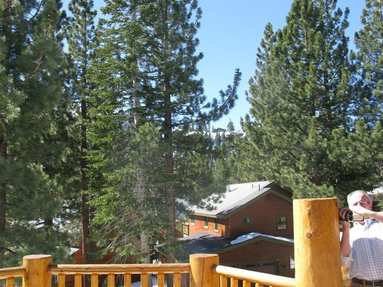 Swiss Chalet Bed and Breakfast Inn : View from deck