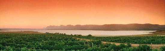 Benguela Cove Lagoon Wine Estate: Lagoon View