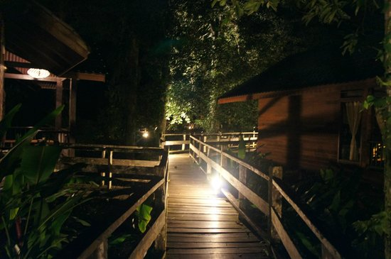 Borneo Rainforest Lodge: BRL at night