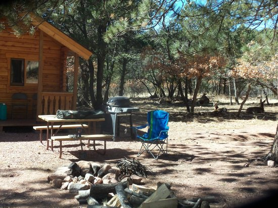 Mountaindale Cabins & RV Resort : Deer in the yard