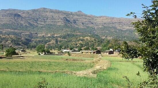 Ahmadnagar, الهند: kalasubai peak