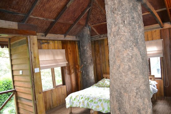 nature zone resort tree house from inside - Tree House Inside