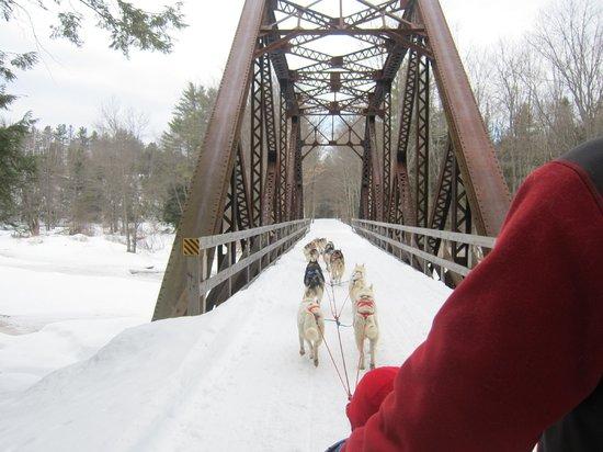 Braeburn Siberians : The trail runs over some old railroad bridges